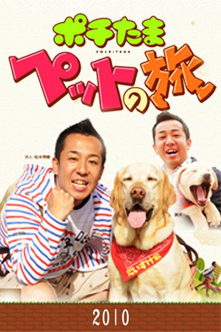 《宠物当家之旅 2010》40集全—日本—综艺—优酷网