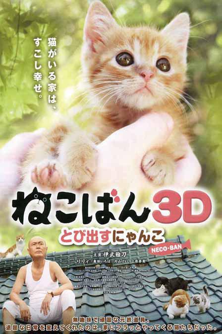 壁纸 动物 猫 猫咪 小猫 桌面 448_672 竖版 竖屏 手机