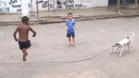 汪星人帮小男孩甩跳绳