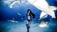 Imax3D-与鲨鱼共舞
