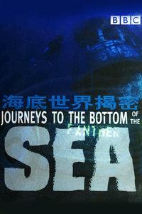 BBC之海底世界揭秘
