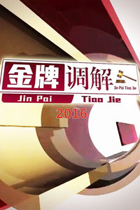 金牌调解 2016