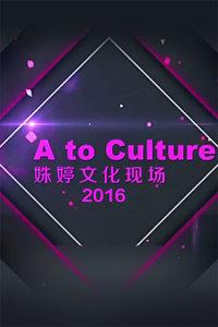 姝婷文化现场 2016