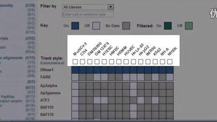 Using the Matrix to View RNASeq Models, ENCODE Data and More