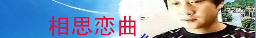 宋小金-迷人的王子 banner
