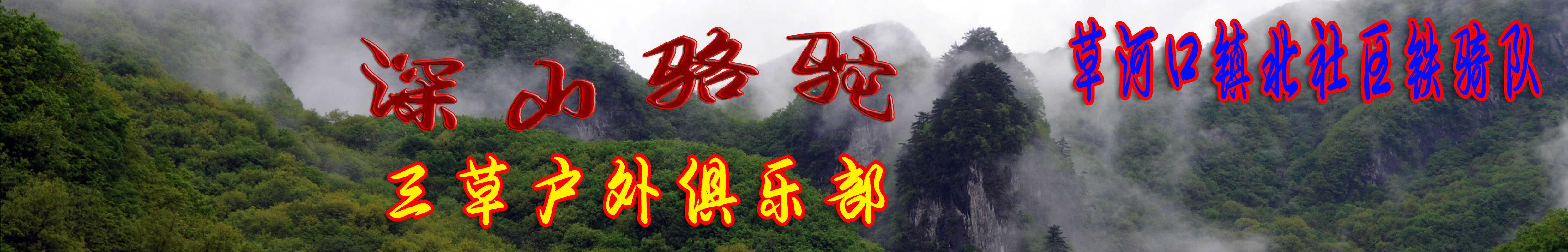 深山骆驼 banner