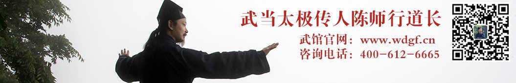 武当陈师行 banner