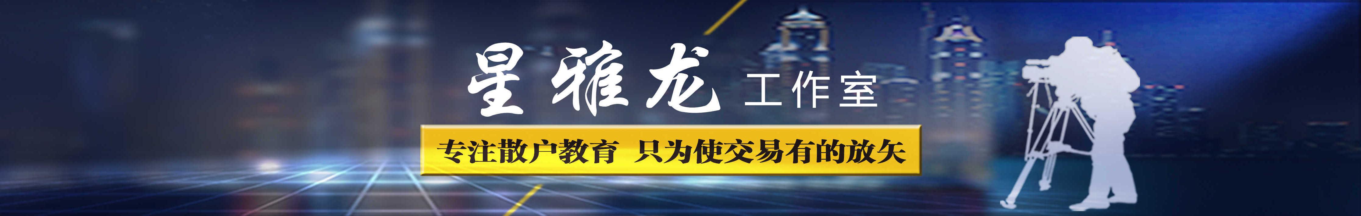星雅龙工作室 banner