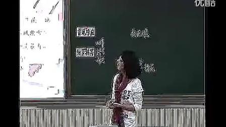《梅花魂》教學實錄人教版小學語文五年級上冊