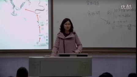 初中生物人教版七上《生態系統第二課時》湖南茹慧香