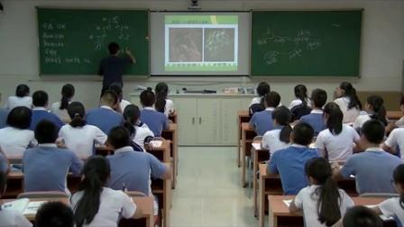 《從生物圈到細胞(第2課時)》教學課例(人教版高一生物,平岡中學:郭明陽)