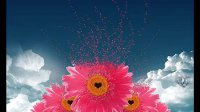 Hiroyuki ODA pres. M.N.O. - Flower (Original Mix)
