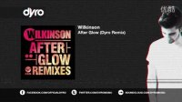 Wilkinson - After Glow (Dyro Remix)
