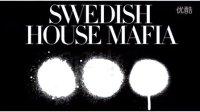 Don't You Worry Child  Swedish House Mafia 歌词版