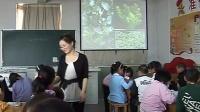 小學三年級科學上冊《水生植物》教學視頻