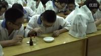 2015四川優質課《低溫誘導植物染色體數目的變化》人教版高一生物,四川省成都市第八中學:祝琳娜