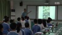 小學五年級美術《馬年說馬》教學視頻,深圳新媒體應用大賽獲獎視頻
