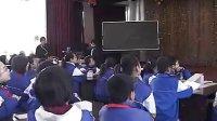全國蘇教版小學科學數字化技術在教學中應用研討會-《斜坡的啟示》 李鳳