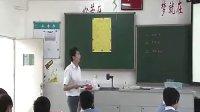 物質的溶解性 浙教版_九年級初三科學優質課